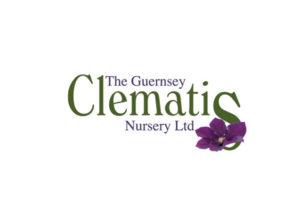Guernsey Clematis